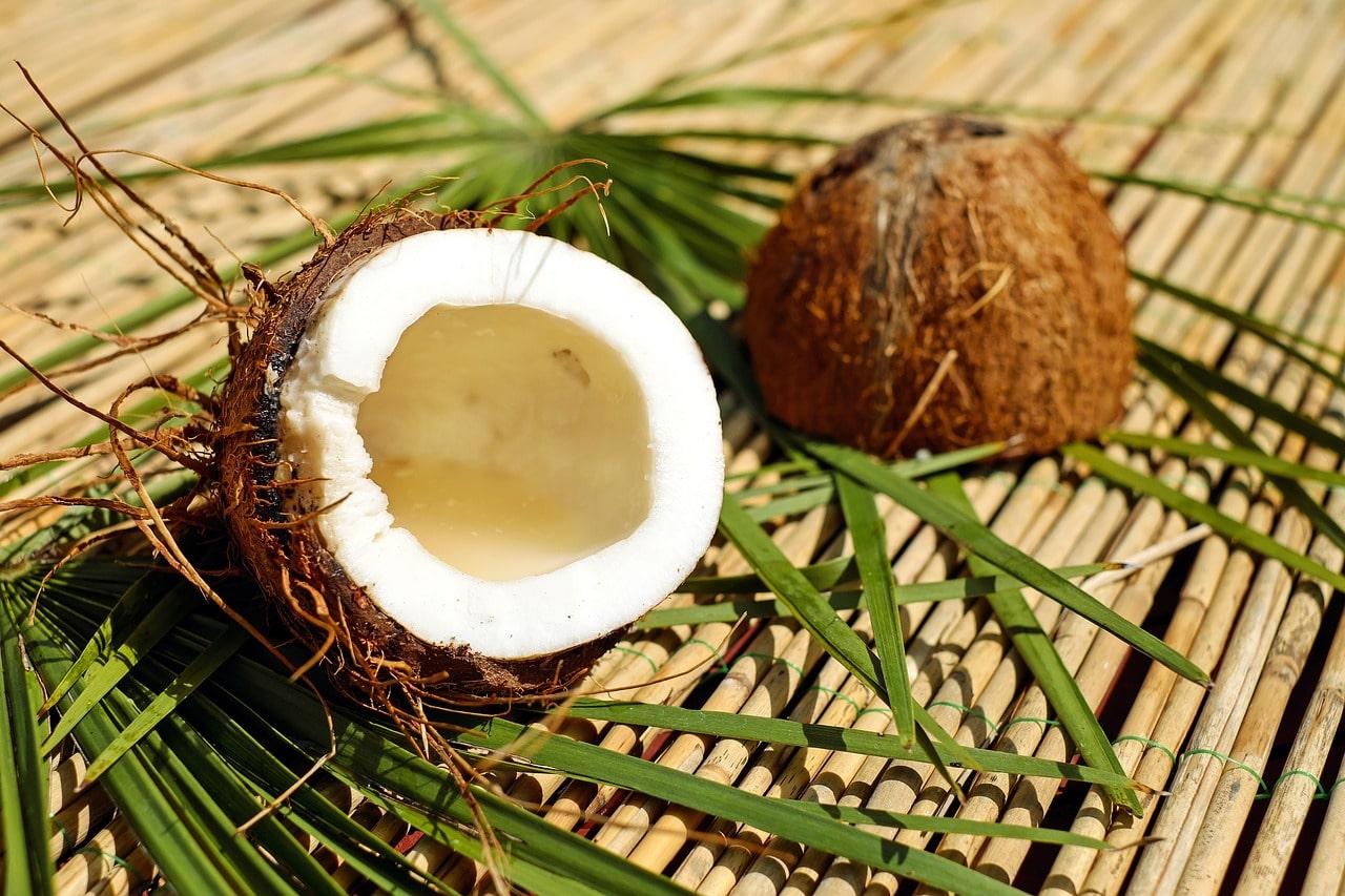 Kokosnuss Gebrochen mit Gras