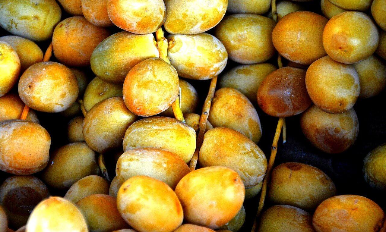 Dattelfrucht