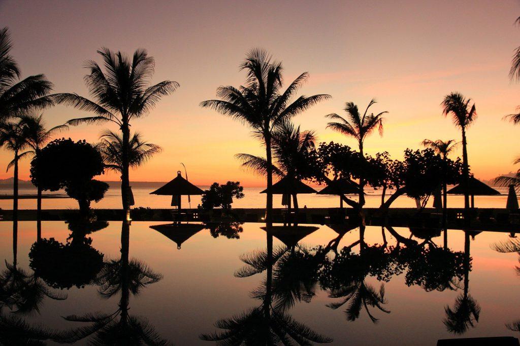 Palmen in Asien